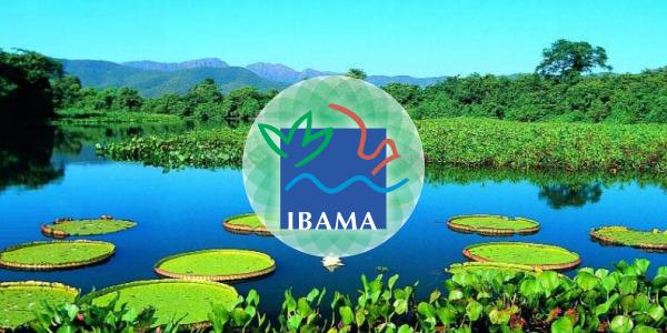 Concurso Ibama.
