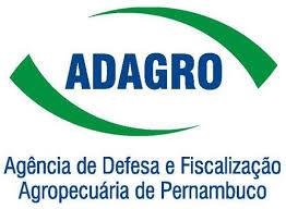 Concurso ADAGRO PE