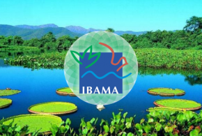 Ibama recebe autorização para nova seleção